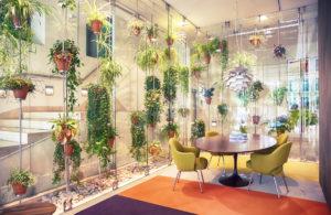 Arredi ufficio green: rendi gli ambienti di lavoro ecosostenibili